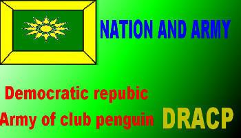 acp-nation-flag-motor20